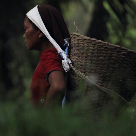 Slavery risk in supply chain